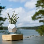 floating plant levitating air plant pot
