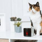 Petcube video monitor with laser toy